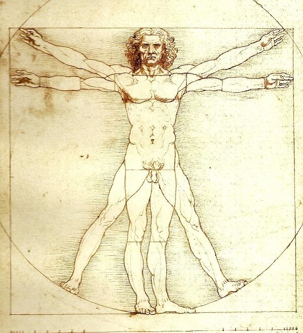 El hombre de Vitruvio, Galería de la Academia de Venecia